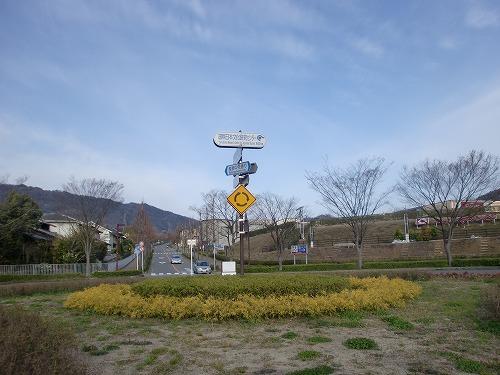 Cimg8342